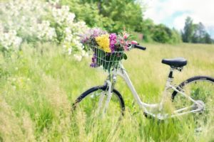 Electric Bike For Elderly: Step-Through Bike In A Meadow
